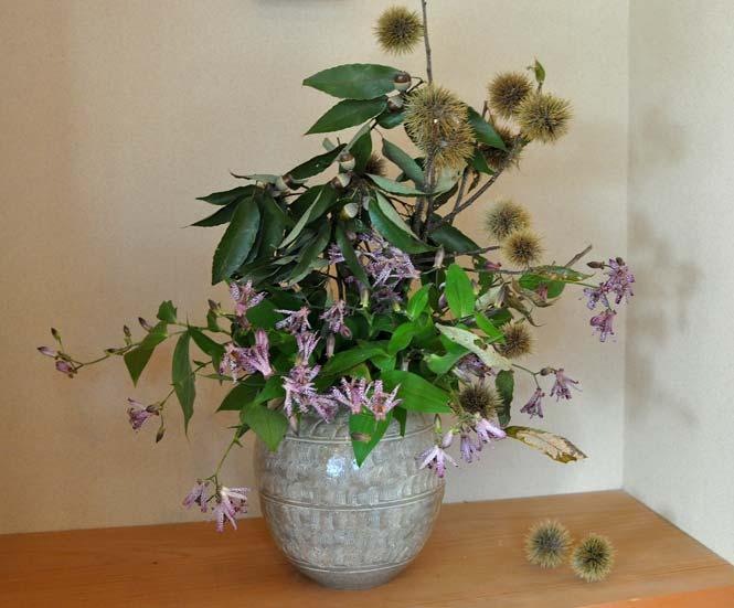 西村陽甫先生の秋の花